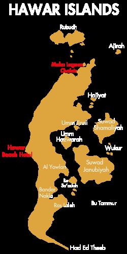 website map-02
